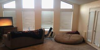 Photo of William's room