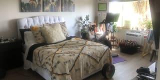 Photo of Dorian-Michelle's room