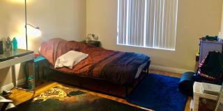 Photo of Alisa Nguyen's room