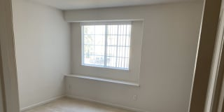 Photo of Alicia's room