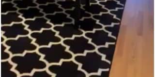 Photo of Mariana's room