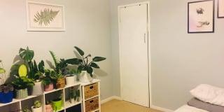 Photo of Zeck's room
