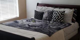 Photo of Alecia's room
