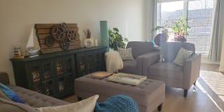 Photo of Katalin's room