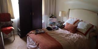 Photo of Nika's room