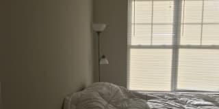 Photo of Yasser's room