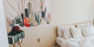 Photo of Priyasha's room