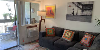 Photo of pteixeira's room