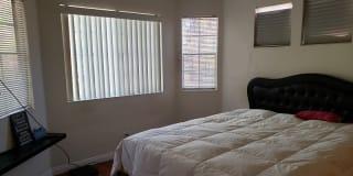 Photo of Michelle Stevens's room