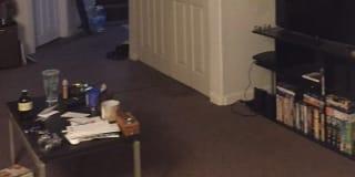 Photo of Talissa's room