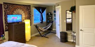 Photo of Steph's room