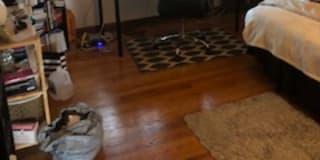 Photo of Molly's room