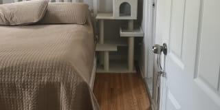Photo of Hayley's room