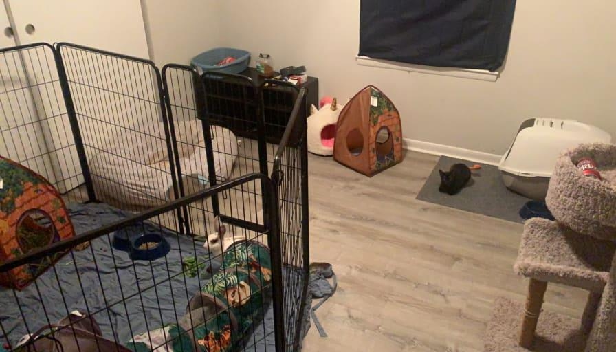 Photo of Sabrina's room