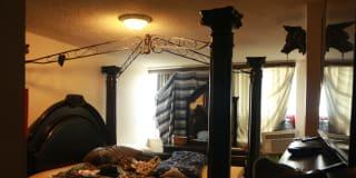 Photo of bazu's room