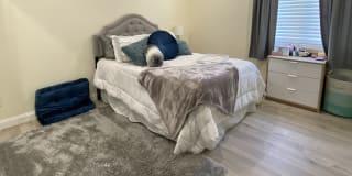 Photo of Cathleen's room