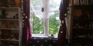 Photo of Anastasia's room