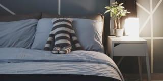 Photo of Felicia's room