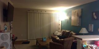 Photo of Amanda's room