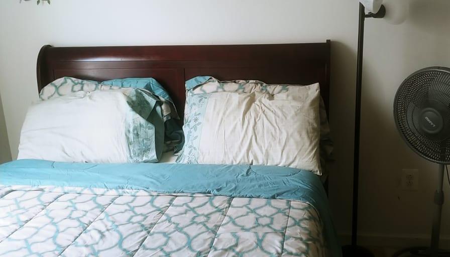 Photo of Dola's room