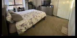 Photo of Sharry's room