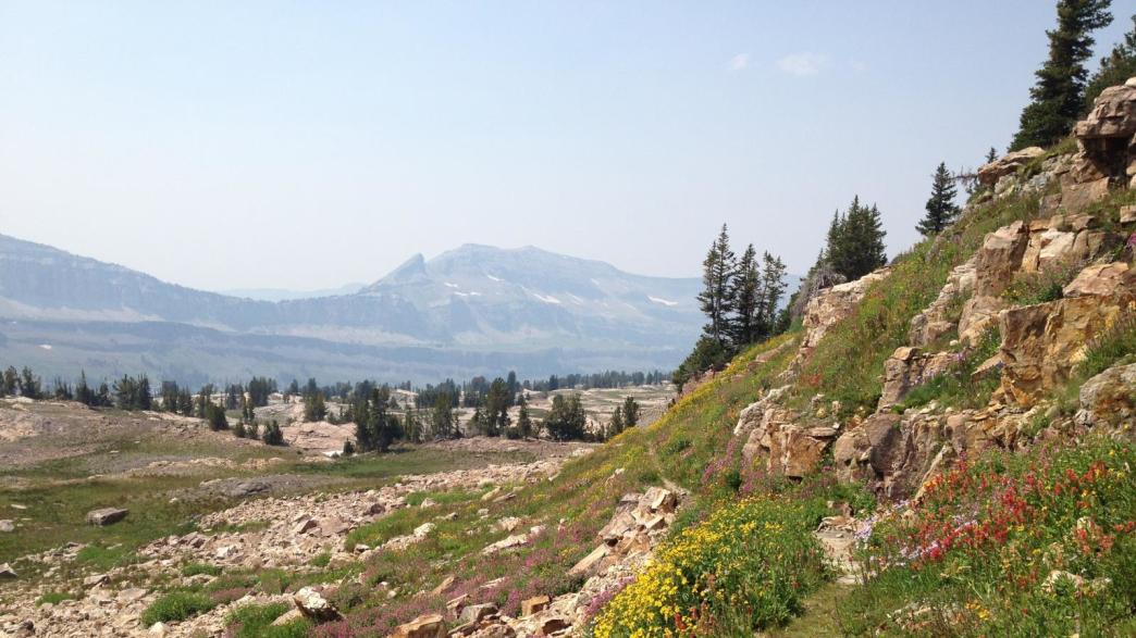 Alaska Basin