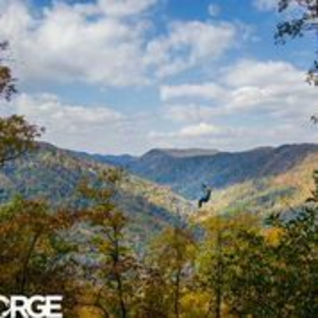 Courtesy of The Gorge Image for The Gorge Zip Line Canopy Tour & The Gorge Zip-line Canopy Tour
