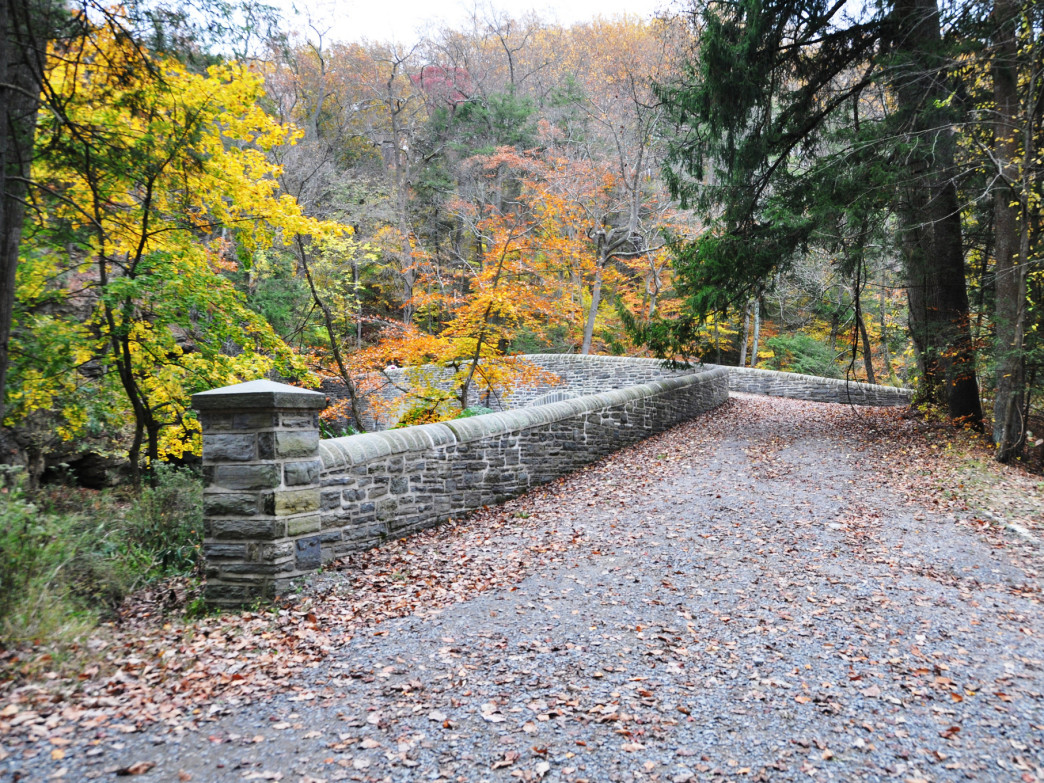 Forbidden Drive in Wissahickon Valley Park offers great shade and few hills.