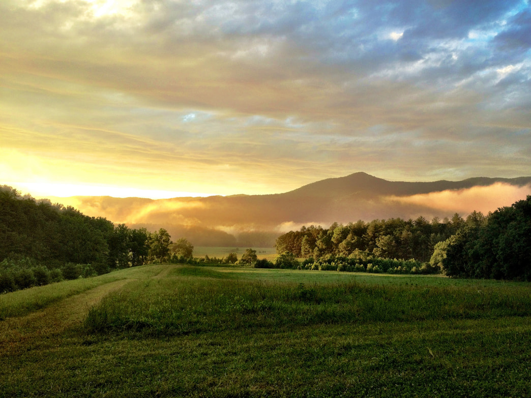 If you hit Cades Cove at dawn or dusk, you'll have a much better chance of having it to yourself.