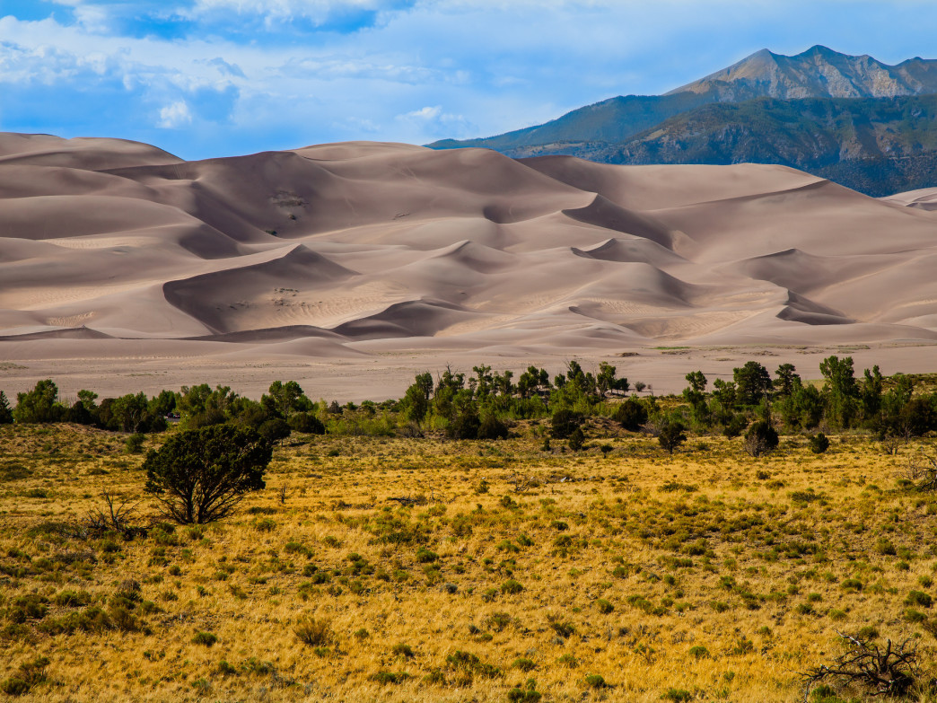The beautiful dunes.