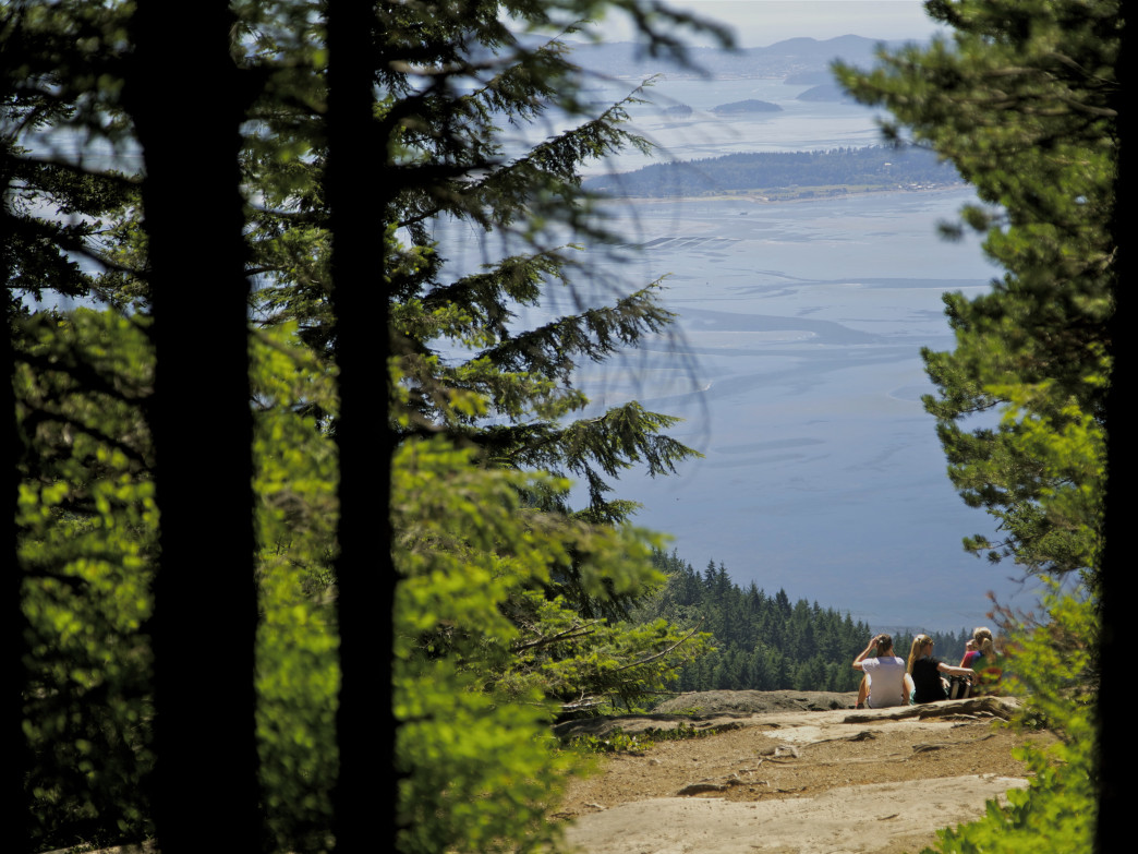 Locals soak in the sun on top of Bellingham's favorite Chuckanut hike.