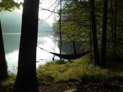 Image for Joyce Kilmer Memorial Forest