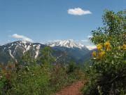 Image for Sunnyside Trail