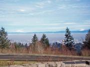 Image for Council Crest - Washington Park Loop