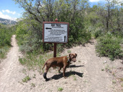 Image for Rim Trail Hiking