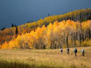 Image for Four Corners Mountain Biking