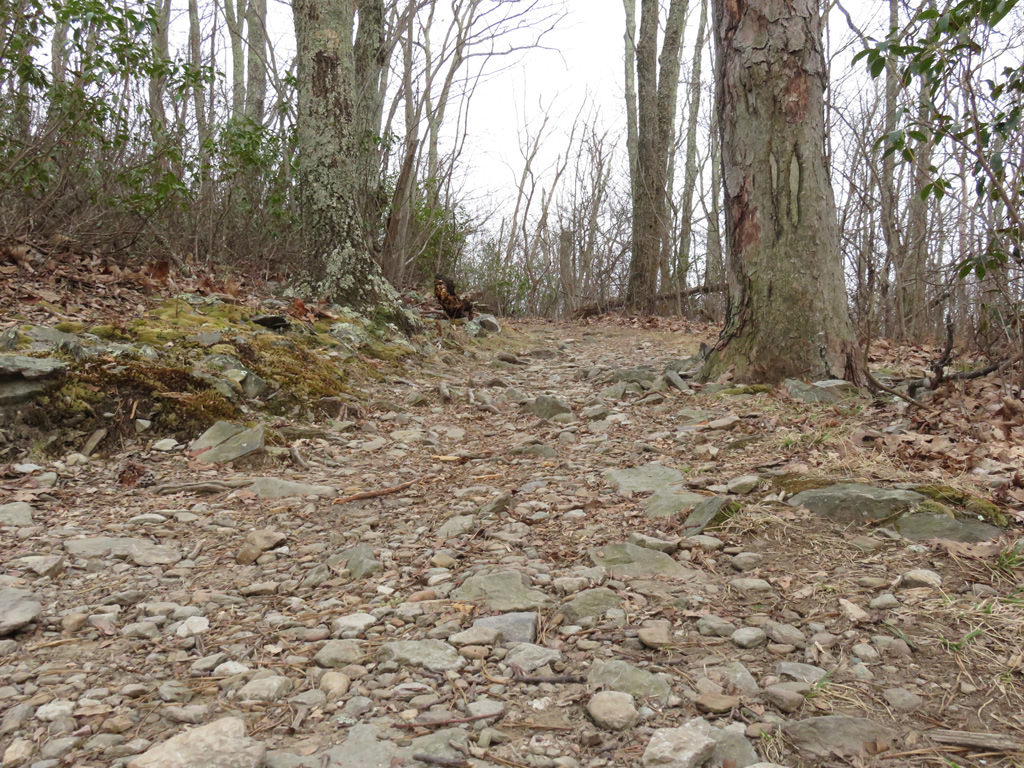 Riprap Trail