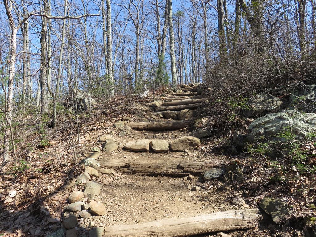 Tuscarora-Overall Run Falls Trail