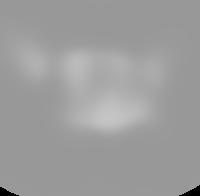 american-payroll-association-logo