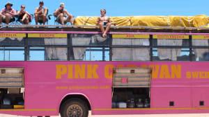 Varför resa med Rosa Bussarna?