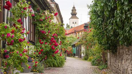 Weekendresa till Gotland