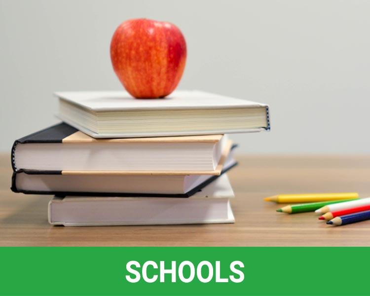 Rosarito Beach Schools