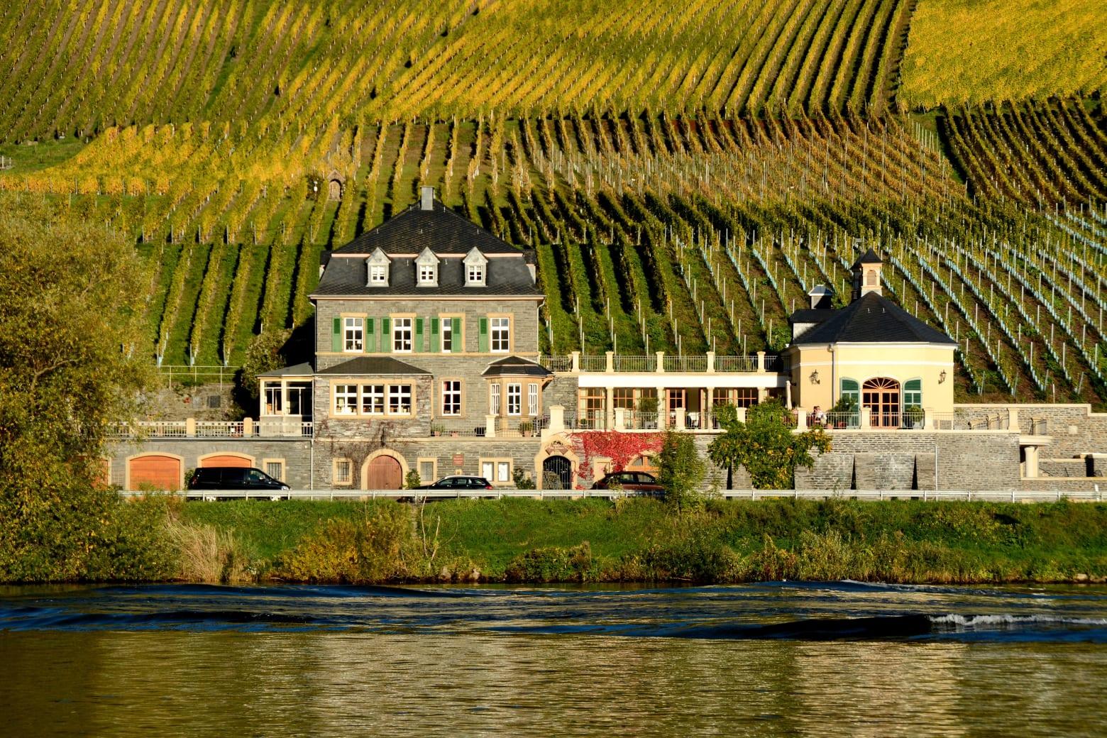 Weingut Ernst Loosen