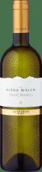 2020 E.Walch Pinot Bianco Alto Adige DOC