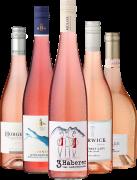 5er Probierpaket »Unsere Rosé-Lieblinge«