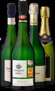 Ludwig's Weinprobe »Prickelnder Hochgenuss«