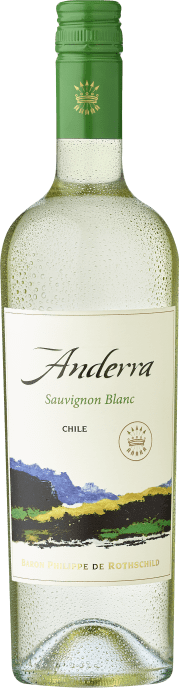 2019 Rothschild Anderra Sauvignon Blanc