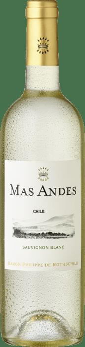 2020 Mas Andes Sauvignon Blanc