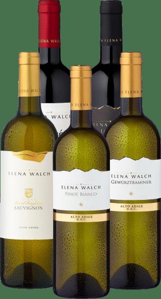 Probierpaket »Elena Walch«
