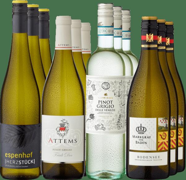 12er Probierpaket »Best of Grauburgunder / Pinot Grigio«